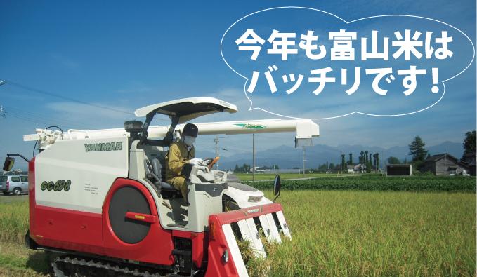 平成23年度の富山のお米の出来はバッチリです!
