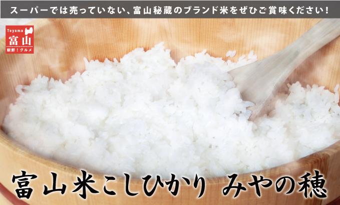 スーパーでは売っていない、富山秘蔵のブランド米をぜひご賞味ください!