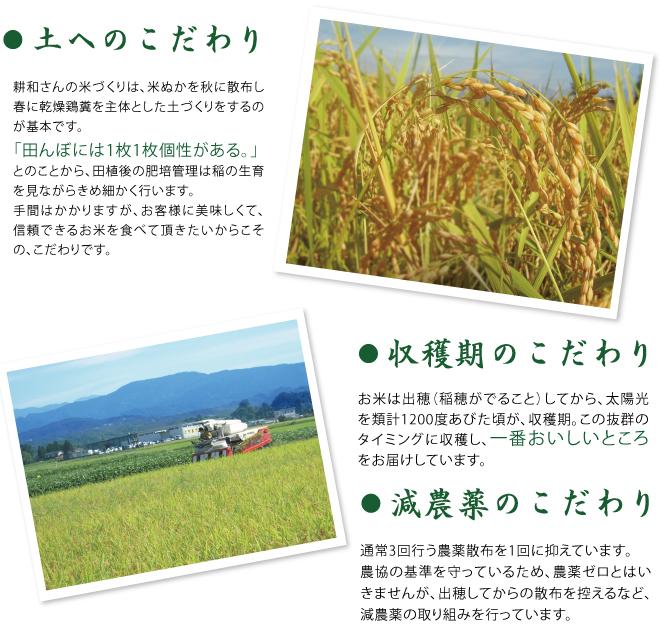 土、収穫期、減農薬のこだわり