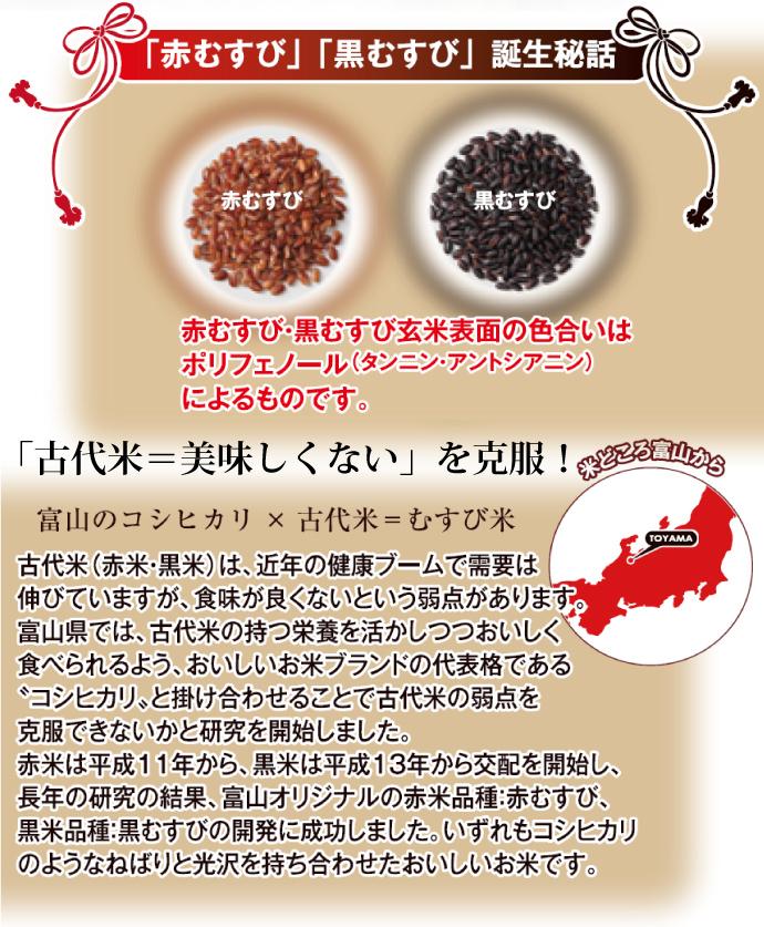 古代米=美味しくない を克服!コシヒカリと古代米のコラボ