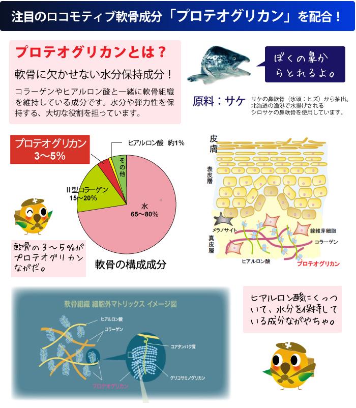 注目のロコモティブ軟骨成分「プロテオグリカン」を配合!サケの鼻軟骨(氷頭:ヒズ)から抽出。北海道の漁港で水揚げされるシロサケの鼻軟骨を使用しています。