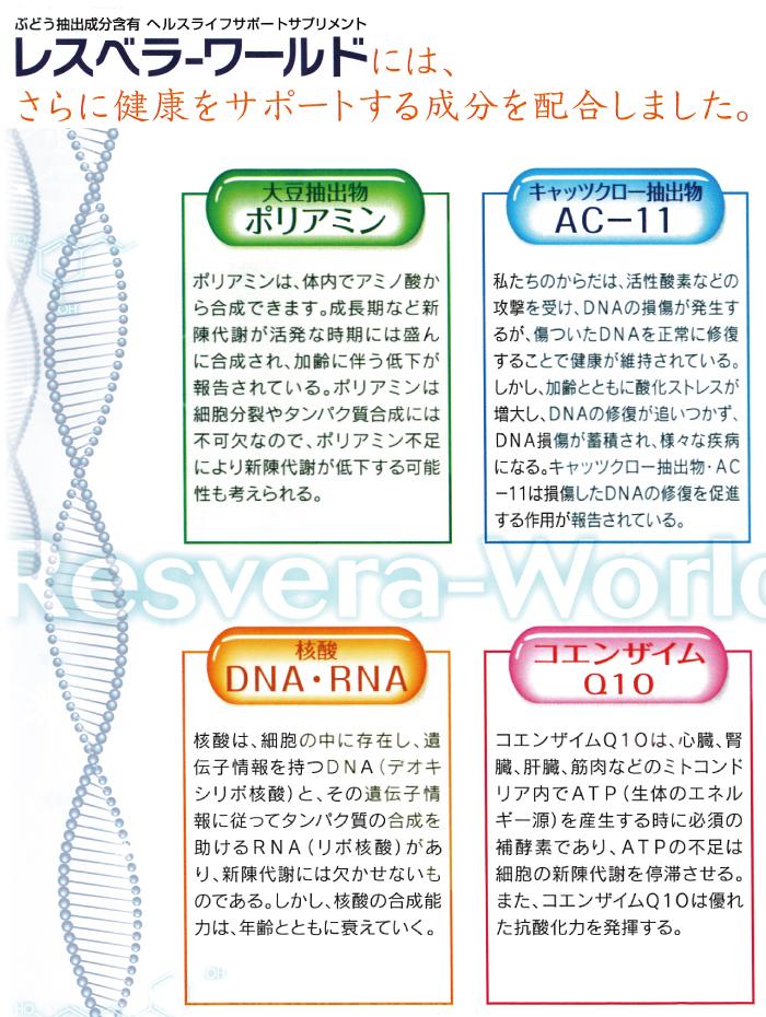 レスベラワールドには健康をサポートする成分である ポリアミン AC-11 DNA・RNA コエンザイムQ10が配合