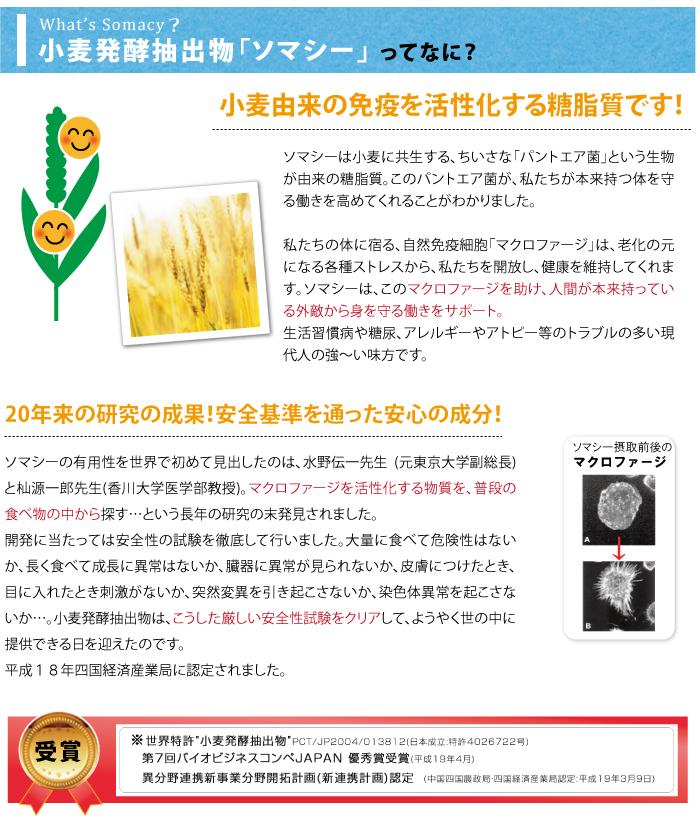 小麦発酵抽出物ソマシーでマクロファージをサポート