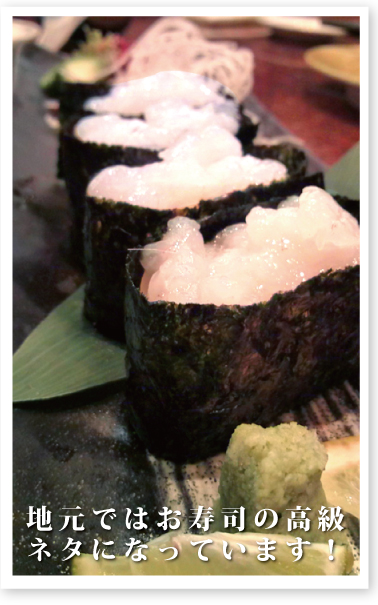 地元ではお寿司の高級ネタになっている白えび